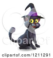 Black Cat Wearing A Witch Hat And Sitting