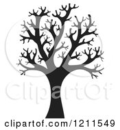 Black Silhouetted Bare Tree