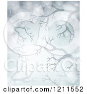 Cartoon Of A Winter Background Of Bare Tree Branches And Flares Over Gray Royalty Free Vector Clipart