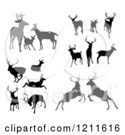 Clipart Of Gray And Black Silhouetted Deer Stags Bucks Does And Fawns Royalty Free Vector Illustration by AtStockIllustration