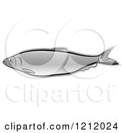 Clipart Of A Silver Fish Royalty Free Vector Illustration