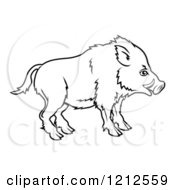 Cartoon Of An Outlined Chinese Zodiac Boar In Profile Royalty Free Vector Clipart by AtStockIllustration