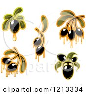 Clipart Of Black Olives With Leaves And Dripping Oil Royalty Free Vector Illustration