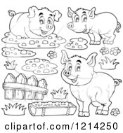 Outlined Happy Pigs With Mud A Fence And Slop