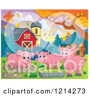 Happy Pigs In A Barnyard