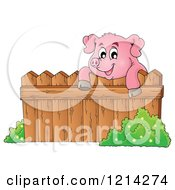 Happy Pig Looking Over A Fence