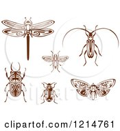 Clipart Of Brown Woodcut Beetles Moth Dragonfly And Wasp Royalty Free Vector Illustration by Vector Tradition SM