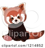 Clipart Of A Cute Red Panda Sitting Royalty Free Vector Illustration by Pushkin