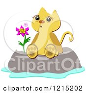 Happy Cat Sitting On A Boulder With A Flower