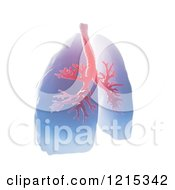 Clipart Of A 3d Pair Of Human Lungs And Bronchi On White Royalty Free Illustration