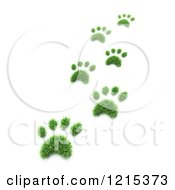 Clipart Of 3d Grass Pet Paw Prints Royalty Free Illustration by Mopic
