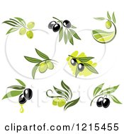 Clipart Of Black And Green Olives With Leaves And Oil Drops Royalty Free Vector Illustration
