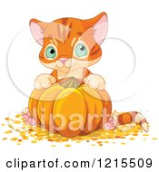 Clipart Of A Cute Orange Kitten Sitting Behind A Pumpkin Royalty Free Vector Illustration