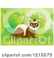 Clipart Of A Cute Happy Polecat Weasel In Nature Royalty Free Illustration by Alex Bannykh