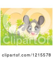 Clipart Of A Cute Happy Chinchilla In Nature Royalty Free Illustration by Alex Bannykh