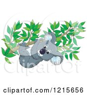 Clipart Of A Cute Koala Clinging To A Tree Branch Royalty Free Vector Illustration by Alex Bannykh