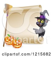 Black Cat Wearing A Witch Hat And Pointing To A Scroll Sign With A Broomstick And Halloween Pumpkins