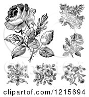 Black And White Rose Designs