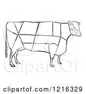 Retro Clipart Of A Vintage Cow Showing The Cuttings Of Beef Royalty Free Vector Illustration