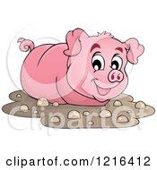 Happy Pig Wading In Mud
