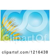 Clipart Of Rushes Of Wheat Over Blue Sky Royalty Free Vector Illustration
