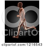 Clipart Of A 3d Running Xray Man With Visible Skeleton And Highlighted Knees Over Black Royalty Free Illustration