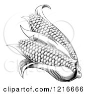 Clipart Of Vintage Woodcut Styled Ears Of Corn In Black And White Royalty Free Vector Illustration