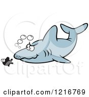 Clipart Of A Shark Stalking Its Prey Royalty Free Vector Illustration