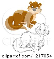 Clipart Of A Cute Weasel In Color And Black And White Royalty Free Illustration by Alex Bannykh