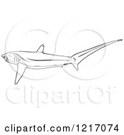 Clipart Of A Black And White Pelagic Thresher Shark Royalty Free Vector Illustration by dero