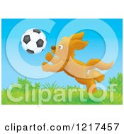 Clipart Of A Happy Dog Chasing A Soccer Ball In A Field Royalty Free Illustration by Alex Bannykh