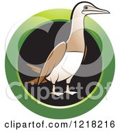 Clipart Of A Bobo Booby Bird With A Green Ring Royalty Free Vector Illustration