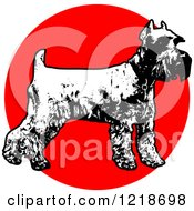 Clipart Of A Standing Black And White Schnauzer Over A Red Circle Royalty Free Vector Illustration