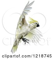 Clipart Of A Sulphur Crested Cockatoo Royalty Free Vector Illustration by dero