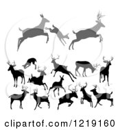 Clipart Of Gray And Black Silhouetted Deer Stags Bucks Does And Fawns 3 Royalty Free Vector Illustration