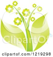 Clipart Of A Plant With Green Leaves And Flowers Royalty Free Vector Illustration by Andrei Marincas