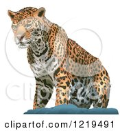 Clipart Of A Leopard On A Rock Royalty Free Vector Illustration by dero