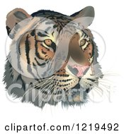 Clipart Of A Tiger Face Royalty Free Vector Illustration by dero
