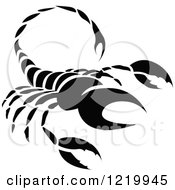 Clipart Of A Black And White Astrology Scorpio Scorpion Zodiac Star Sign Royalty Free Vector Illustration by cidepix