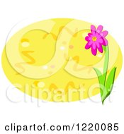 Pink Flower And Yellow Oval