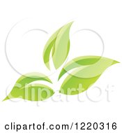 Clipart Of Green Organic Leaves 6 Royalty Free Vector Illustration by cidepix