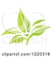 Clipart Of Green Organic Leaves 3 Royalty Free Vector Illustration by cidepix