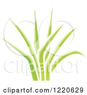 Clipart Of A Patch Of Green Grass Royalty Free Vector Illustration by cidepix