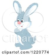Clipart Of A Gray And White Bunny Rabbit Facing Left Royalty Free Vector Illustration