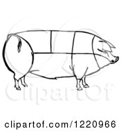 Clipart Of A Black And White Pig Showing Cuts Of Pork Royalty Free Vector Illustration