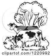 Clipart Of Black And White Cows Grazing By A Tree Royalty Free Vector Illustration