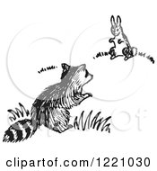 Black And White Raccoon And Rabbit
