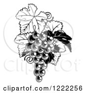 Clipart Of A Black And White Bunch Of Grapes And Leaves Royalty Free Vector Illustration