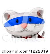 Clipart Of A 3d White Super Kitten Over A Sign Royalty Free Illustration