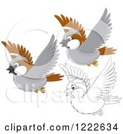 Clipart Of Outlined And Colored Cute Sparrow Birds Flying Royalty Free Vector Illustration